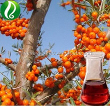 100% Natural Seabuckthorn Berry Oil high in Omega 7