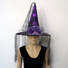 Witch Hat with Veil Costume Accessory Adult Womens Witchy Halloween