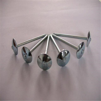 Manufacturer/Factory Supply Roofing Nails With Umbrella Head screw/Ring shank