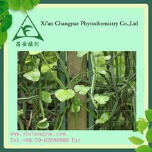 2015 hot sell herb extract Cissus Quadrangularis Extract with free sample