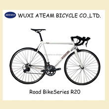 R20 4130 Chromoly 16 Speed Road bike