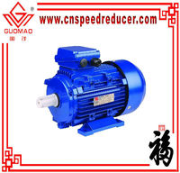 Y2 series heavy duty electric motor