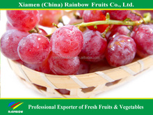Fresh grape red globe grapes for sweet red wine
