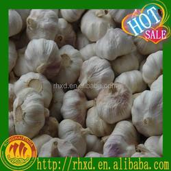 10kg carton garlic, red garlic white garlic, garlic price