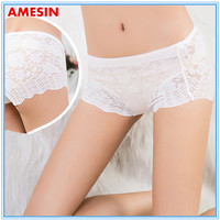 Sexy Lace Womens Transparent Panties Inner Wear Underwear