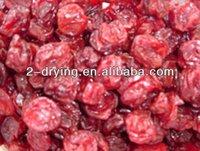 dryer fruit