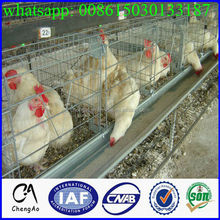 Poultry farm industrial design layer chicken breeding cage