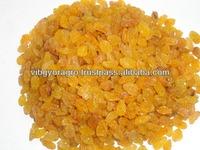 Golden Raisin Long Sangli for Ecuador