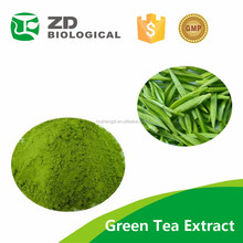 Green Tea Extract, Polyphenol/Catechins/,EGCG/L-Theanine