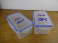 800ml Plastic Rectangle Preserving Box