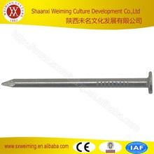High Quality Galvanized Polished Steel Nail,Common Wire Nail