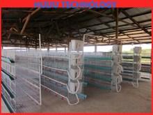Galvanized Welded Wire Mesh Manufacturer Or For Iron Bird Cage chicken breeding cage