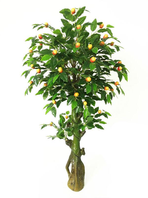 Cina yongyue alberi da frutta artificiale con giuggiola for Alberi frutta vendita