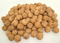 good delicious china fresh walnuts for sale french walnuts cheap walnuts