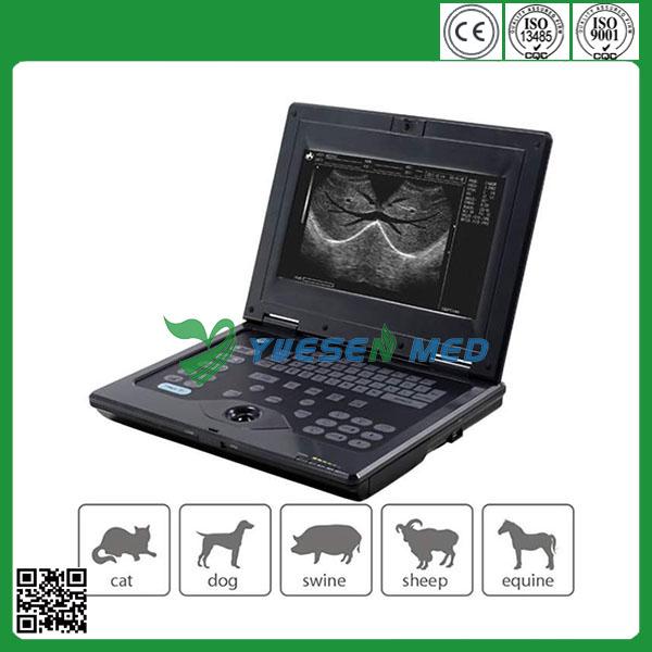 vet ultrasound machine for sale