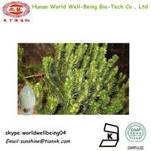 Huperzia Serrata Extract Powder / Huperzia serrata (Thunb. ex Murray) Trev Powder Extract / all-grass of Snake foot club moss pe