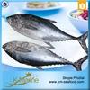 Wholesale Frozen Seafood Albacore Tuna Fish