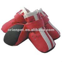 pet dog shoes
