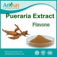Kudzu Root Extract GMP Pueraria Flavone Powder