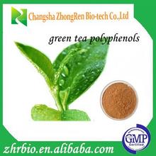 Organic Green Tea extract (Tea Polyphenol 25%-98% )with free samples