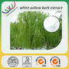 Natural free sample white willow extract,GMP factory herb extracts 30% salicin,factory supply white willow bark(plant extract)