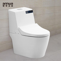 intelligent pregnant woman toilet combined toilet and bidet