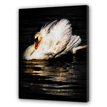 High Quality white Swan oil painting on canvas Animal Oil Painting