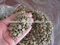 precio de café arábica verde de frijol