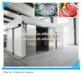 Habitación de almacenaje rápido industrial frío, habitación refrigeradora industrial para frutas, congelador industrial