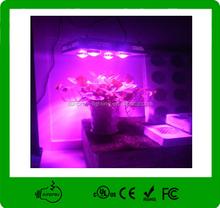 2015 New Design 240W COB grow light led fresh soursop fruit