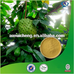 GMP Natural High Quality Graviola Fruit Extract Powder/Soursop Extract/Guanabana Extract