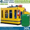 /product-gs/30l-double-station-hdpe-blow-molding-bottle-machine-60166833736.html