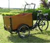2015 hot sale Three Wheel Electric Driving Bike Rickshaw