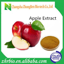 GMP Manufacturer Supply Apple Extract Powder Polyphenol 50%-80%