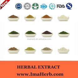 GMP Natural High quality bulk grape seed oil