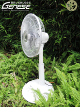 "OEM 16"" High voltage BLDC Stand Fan"