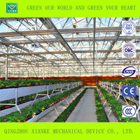 Large Strawberry Glass Greenhouse sale