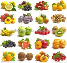 100% Natural Freeze dried Fruit Powder ( ISO, HACCP, HALAL, Kosher)
