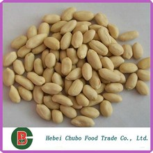 grade A long type blanched peanuts kernel