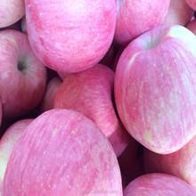 China Fresh big red taste good Fuji qinguan huaniu apple 100#,113#,125#