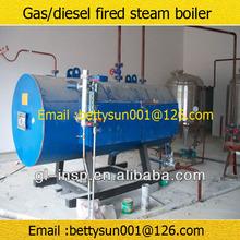 Diesel/gas/lpg 500kg boiler