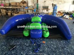 Manta Ray Inflatable Watercraft / Mantaray inflatable boat/ inflatable flying manta ray
