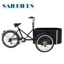 3 wheel electric cargo bike for family