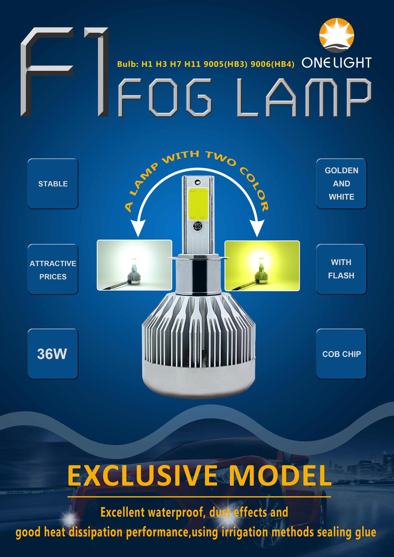 F1 fog lamp.jpg