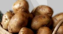 Fresh Potato (MANILA)