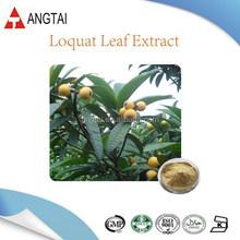 Organic Corosolic acid from Loquat Leaf Extract/Corosolic acid powder with good price