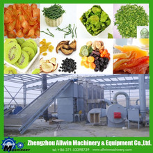 Industrial Mesh Belt Dehydrator Machine Continues Dehydration Plant