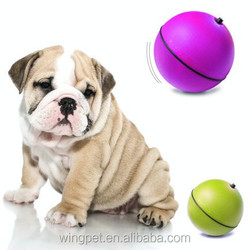 wholesales factory pet products