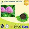 100% pure natural P.E powder/Red Clover Extract powder Total isoflavones 1%~60%