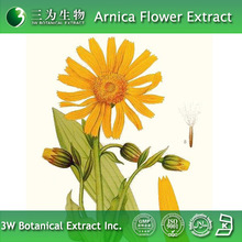 Herbal Medicine Arnica flower Extract with High Quality
